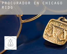 Procurador en  Chicago Ridge